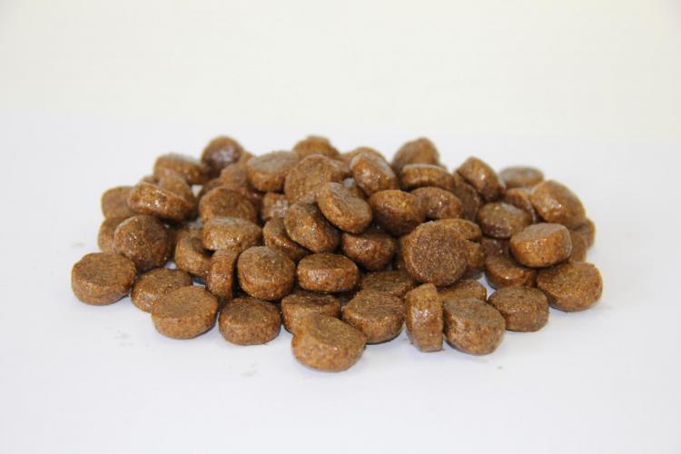 DR. CLAUDER'S ADULT LARGE subalansuotas sausas maistas suaugusiems didelių ir labai didelių veislių šunims