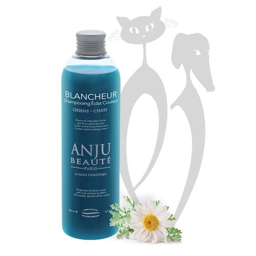 ANJU spalvą paryškinantis šampūnas BLANCHEUR