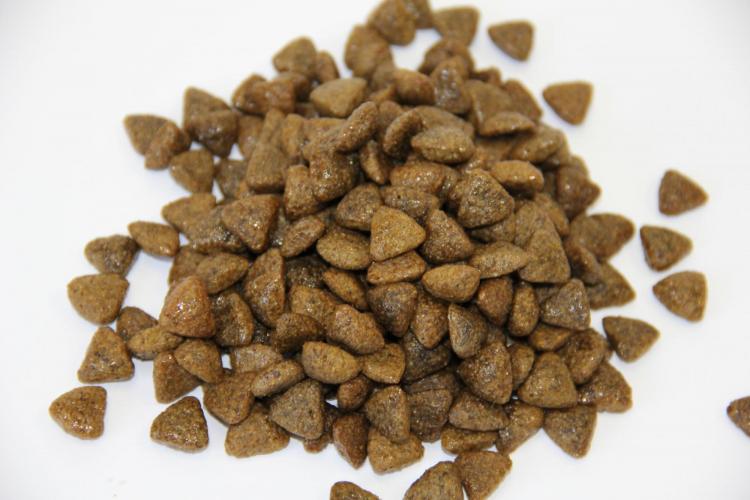 DR. CLAUDER'S SENSITIVE sausas maistas suaugusiems šunims su ėriena ir ryžiais 4kg